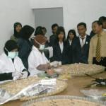 Pabrik-Merapi-Farma